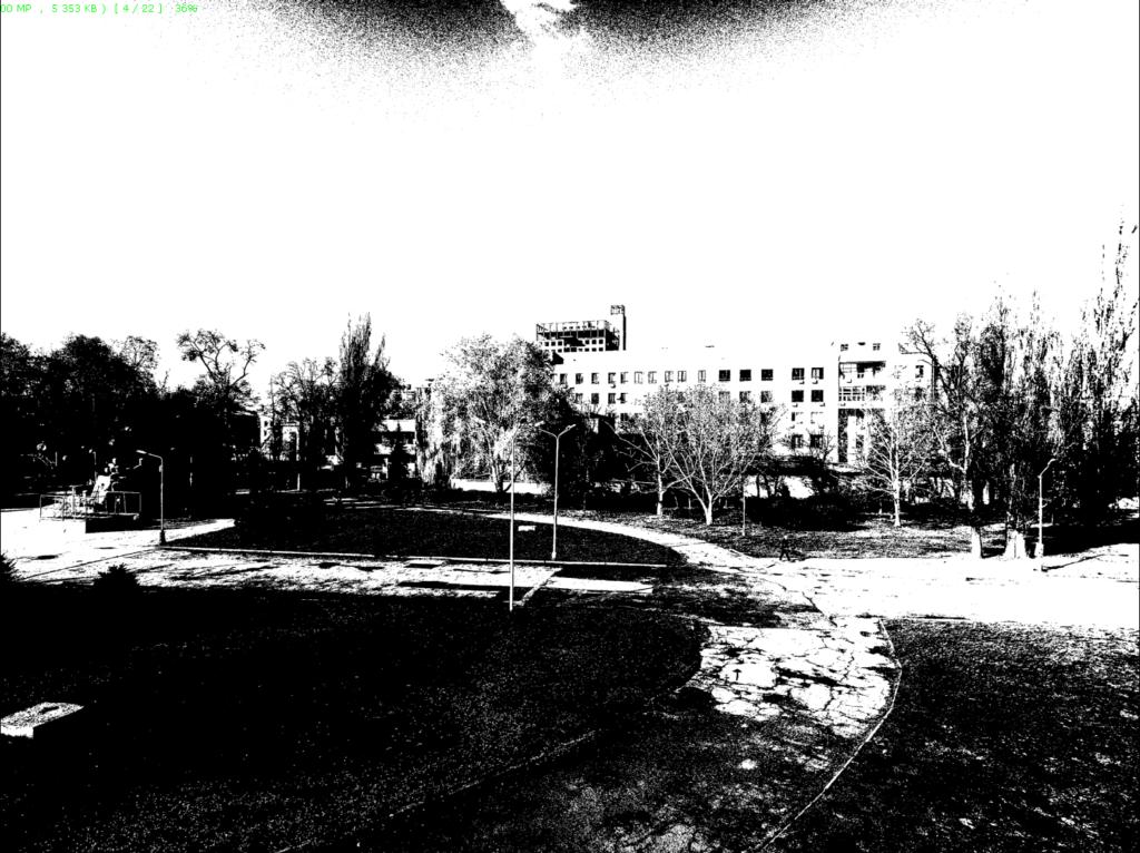 Как сделать фото-черно белым в FastStone Image Viewer